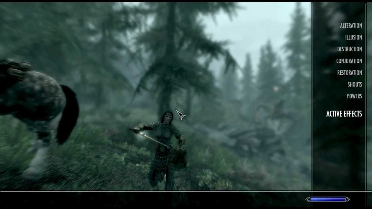 SKYRIM - How To Have Multiple Followers | You Can Have More Than One  Follower in Skyrim ♘