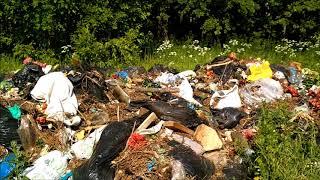 Куда девается мусор с московских кладбищ?
