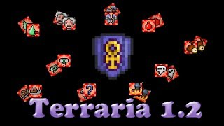 Terraria - Щит Анкха(Анха) и все его комплектующие.