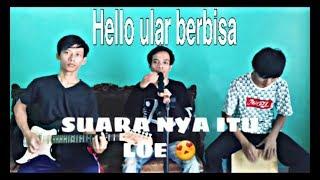 Hello ular berbisa (cover) lirik