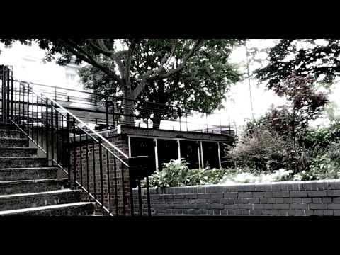 My Pimlico  HD