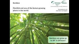 Green Wave Overview - Compostable Tableware - Plates, bowls, cutlery, trays