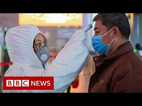 Scientists Search For Coronavirus Vaccine - BBC News