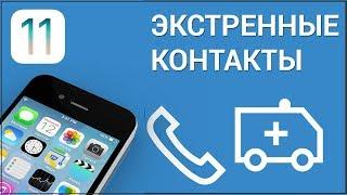 Як налаштувати екстрені контакти на iPhone? Налаштовуємо ''Медкарту'' і номери в додатку ''Здоров''