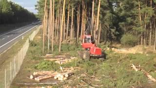 Wycinka lasu pod budowę S3 w okolicach NS