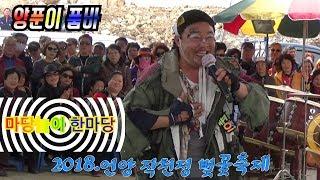 양푼이 품바 🌟대박관중들과 함께 열정의 한마당 놀이.2018.4.1.