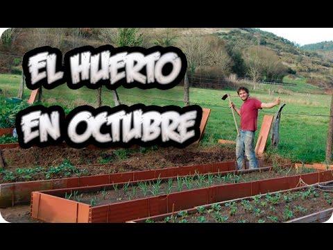 La Huertina De Toni Calendario De Siembra.El Huerto En Octubre Otono Paseo Por El Huerto La Huertina De Toni