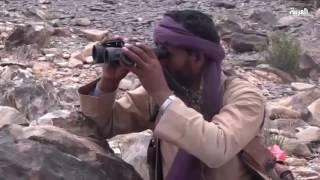 التحالف يقتل قياديين حوثيين.. وتواصل الاشتباكات في تعز