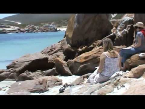 Paternoster Art Holiday