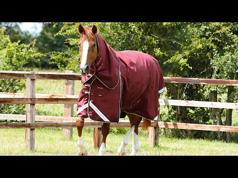 Premier Equine Stable Buster Lite 100