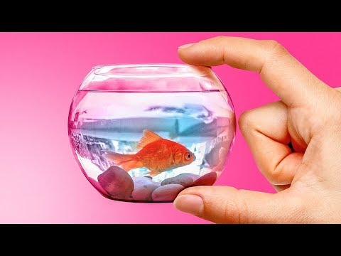 Вопрос: Как сделать аквариум?