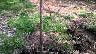 Укрепление берега Днепра(, 2012-04-28T21:13:30.000Z)