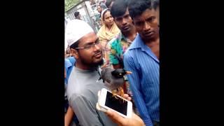 bangladeshi shalik speaks and laughs ( কথা বলা ও হাসতে জানা আজব শালিক)