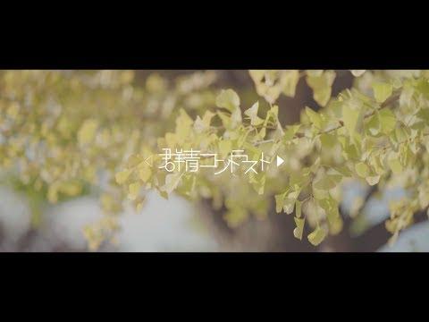 群青コントラスト「約束」MV