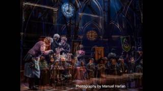 Video Harry Potter and the Cursed Child download MP3, 3GP, MP4, WEBM, AVI, FLV November 2018