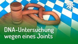 DNA-Untersuchung wegen eines Joints | DHV News #140