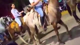 DIA DE LAS PASEADORAS LA HUERTA 2015- VIVE CASIMIRO
