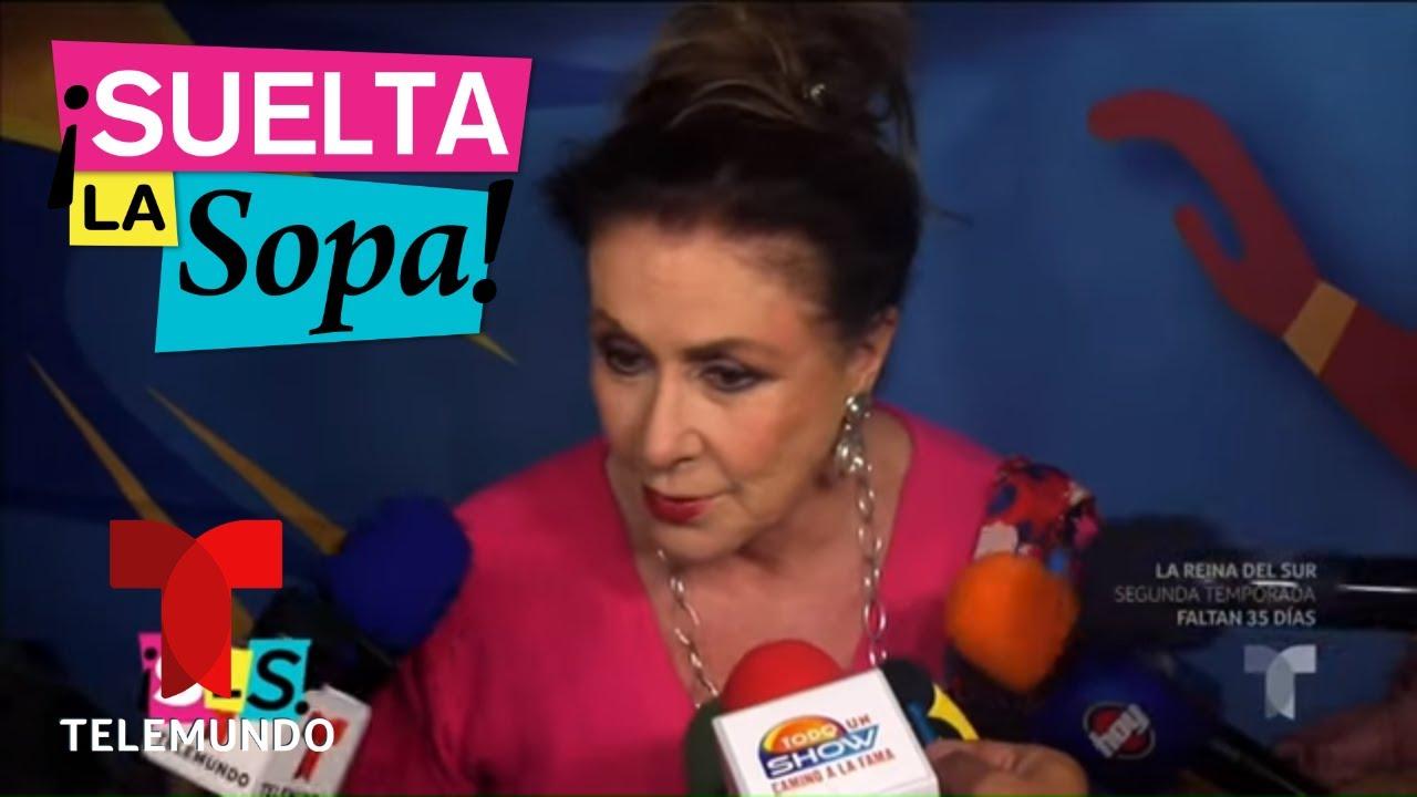 Download ¡Laura Zapata solo dijo cosas buenas de Thalía! | Suelta La Sopa | Entretenimiento
