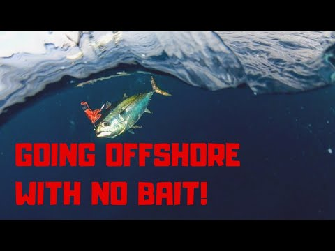 Going Offshore With NO Bait