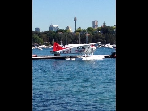 Rose Bay in Sydney Harbour, Eastern Suburbs - Sydney - Australia