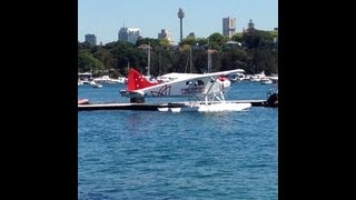 Rose Bay in Sydney Harbour, Eastern Suburbs - Sydney - Australia