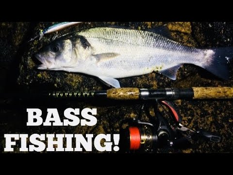 EARLY MORNING LURE FISHING FOR BASS! Tips And Tactics!