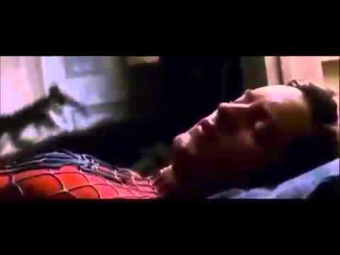 El hombre araña canción