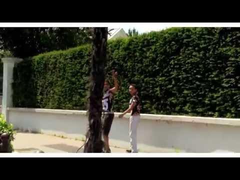 OR - C'EST L'ÉTÉ (Feat DJ Kader K)