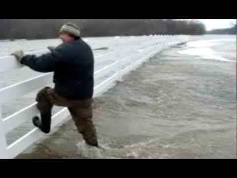 The St Marys Thames River Flood, but at Avalon & Plover Mills Farm - Dec 28, 2008