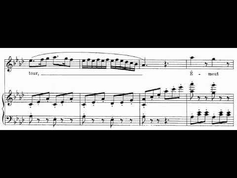 Les oiseaux dans la charmille (Les Contes D'Hoffmann - J. Offenbach) Score Animation