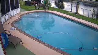 guy falls in pool with phone - 1004637