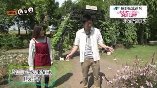 SBCテレビ「3時は!ららら♪」で放送 × 楽天トラベル「しあわせスポット」...