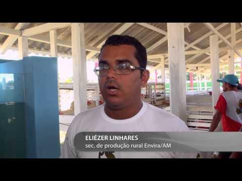 Conheça o município de Envira/AM
