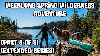 Weeklong Spring Wilderness Adventure With My Dog (Part 2 of 5) [Extended Series]