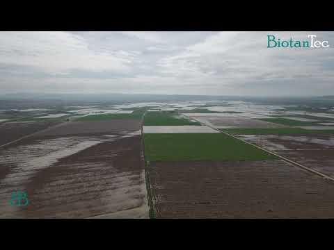 Inundaciones Ribera del Ebro
