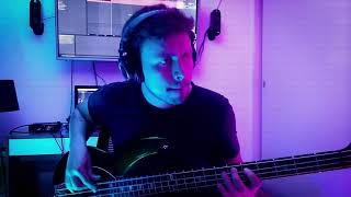 🎧The Night Flight Orchestra - Domino (Bass)