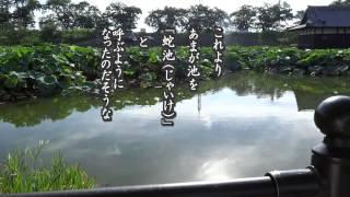『蛇池伝説 蛇池神社』 名古屋市西区新川洗堰(しんかわあらいぜき)