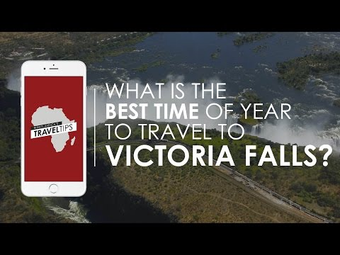 When is the best time of year to travel to Victoria Falls? Rhino Africa's Travel Tips