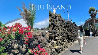 vlog | 제주 3박4일 뚜벅이 여행브이로그 | 여행…