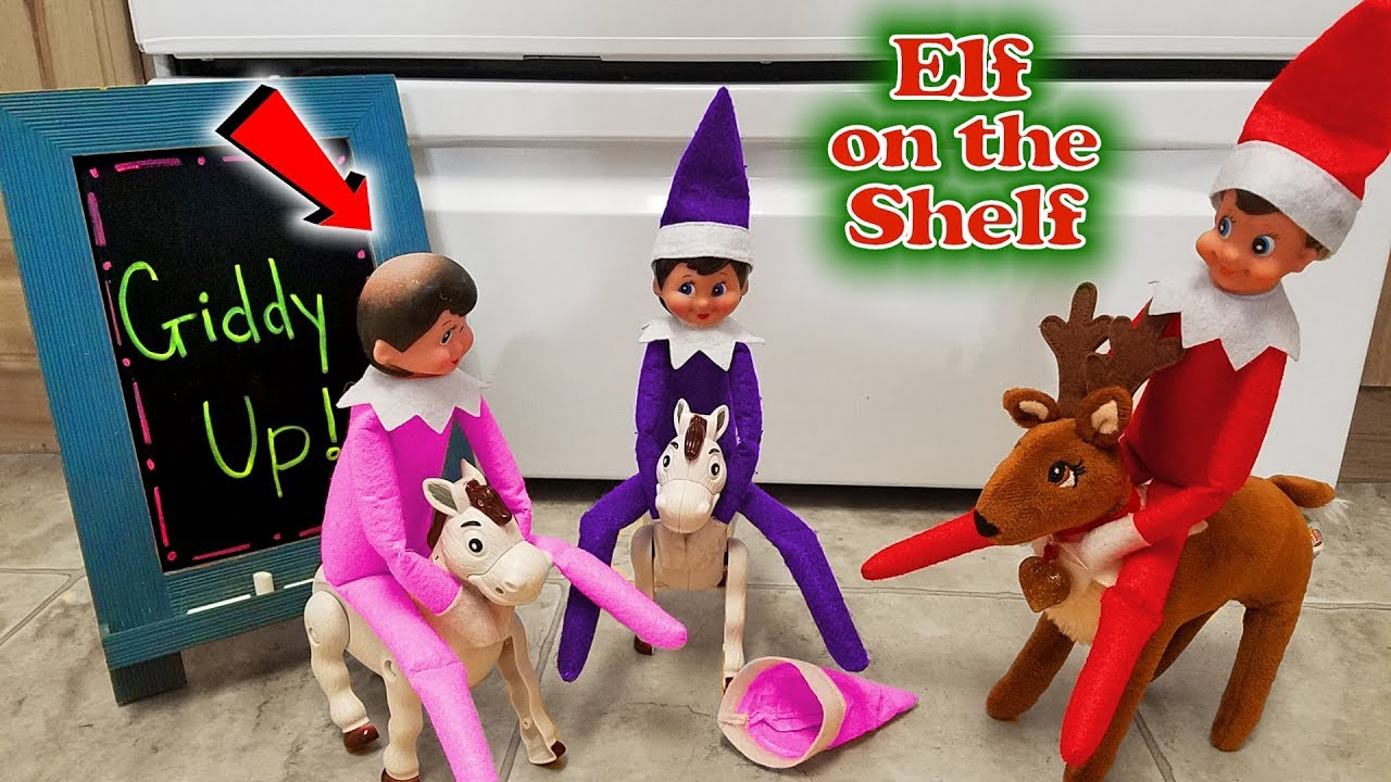 Purple & Pink Elf on the Shelf - Lost Hat on Real Horse ... - photo#23