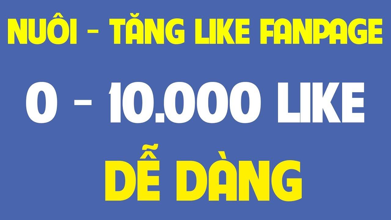 Nuôi Fanpage Từ 0 – 10.000 Like Facebook Nhanh Chóng Bật Kiếm Tiền Facebook Video