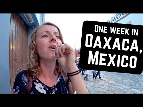 We visited OAXACA CITY and this is what happened