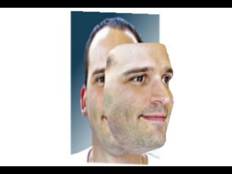 3D FACE RECONSTRUCTION FROM A SINGLE IMAGE