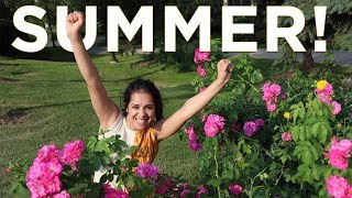 Summer is Here! - The Best Months in Canada