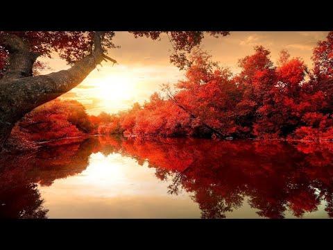 Beautiful Relaxing Music: Romantic Music, Piano Music, Violin Music, Cello Music ★115