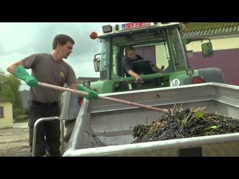 Les métiers de l'agronomie - Jean-Francois Baele (HEPN)