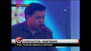 Flor de Amapola en GamaTV