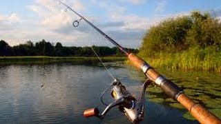 Рибалка. Вудки на хижу рибу