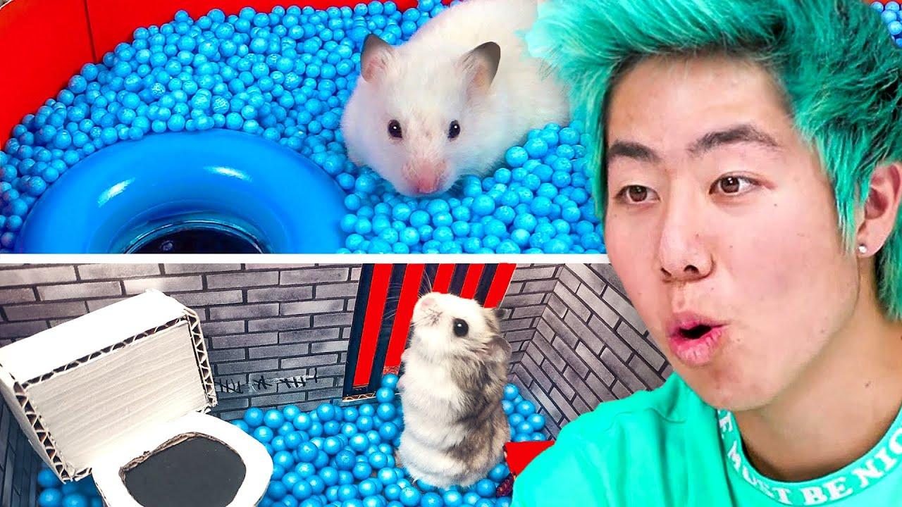 World's Most Insane Hamster Mazes!