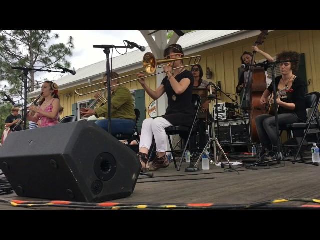 Shake 'Em Up Jazz Band - Washboard Wiggles
